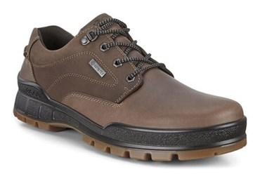 Brown ECCO TRACK 25