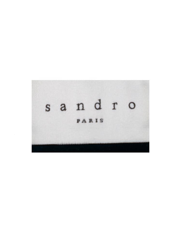 Siyah Sandro Deri Ceket